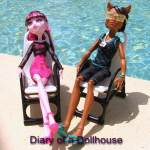 Clawd Wolf and Draculaura Music Festival Dolls